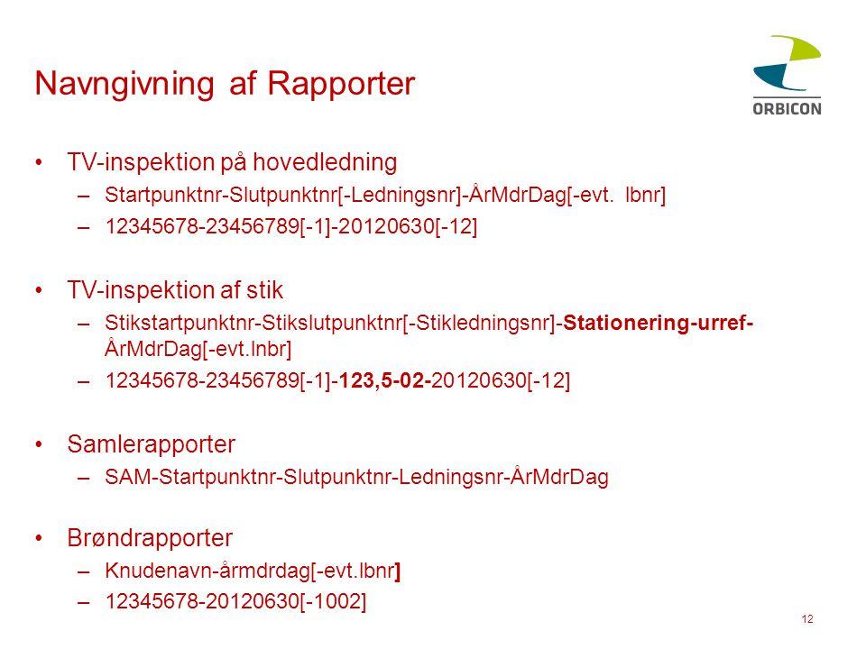 Navngivning af Rapporter