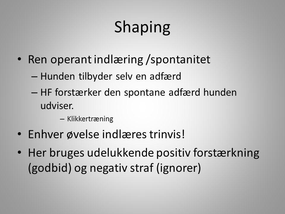 Shaping Ren operant indlæring /spontanitet