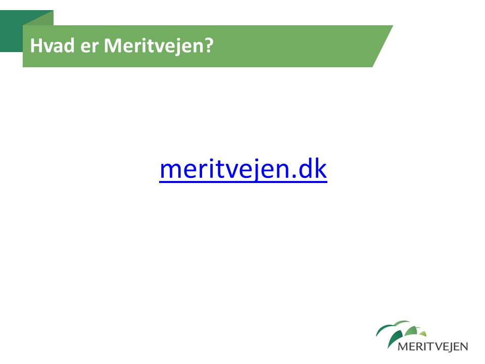 Hvad er Meritvejen meritvejen.dk