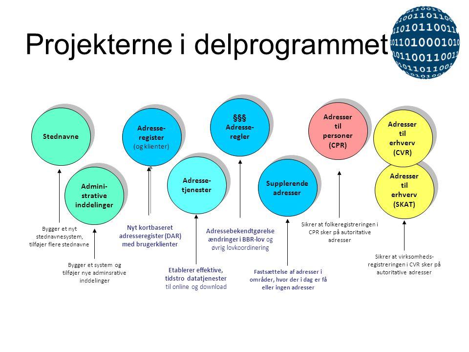 Projekterne i delprogrammet