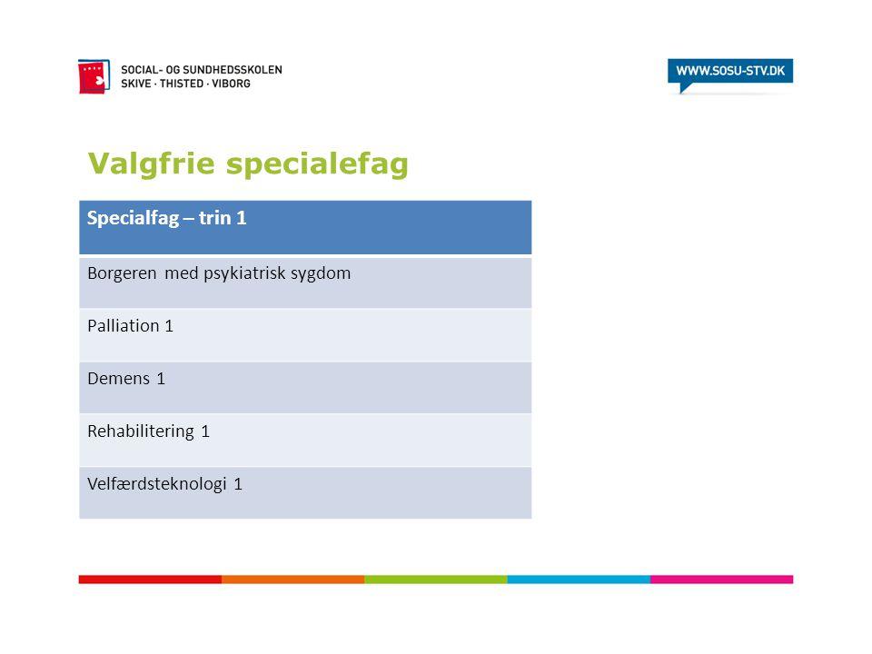Valgfrie specialefag Specialfag – trin 1