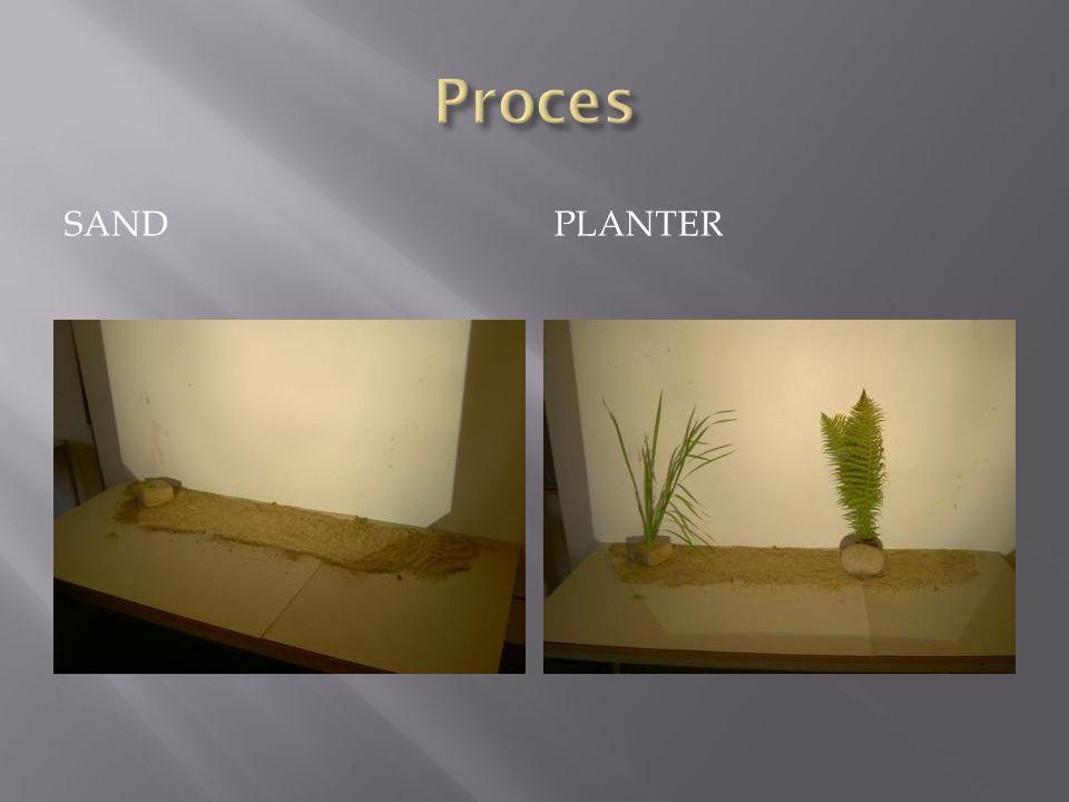 Proces Sand Planter