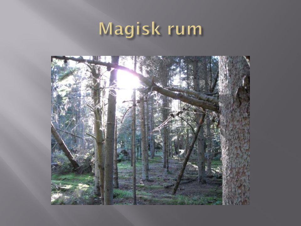 Magisk rum