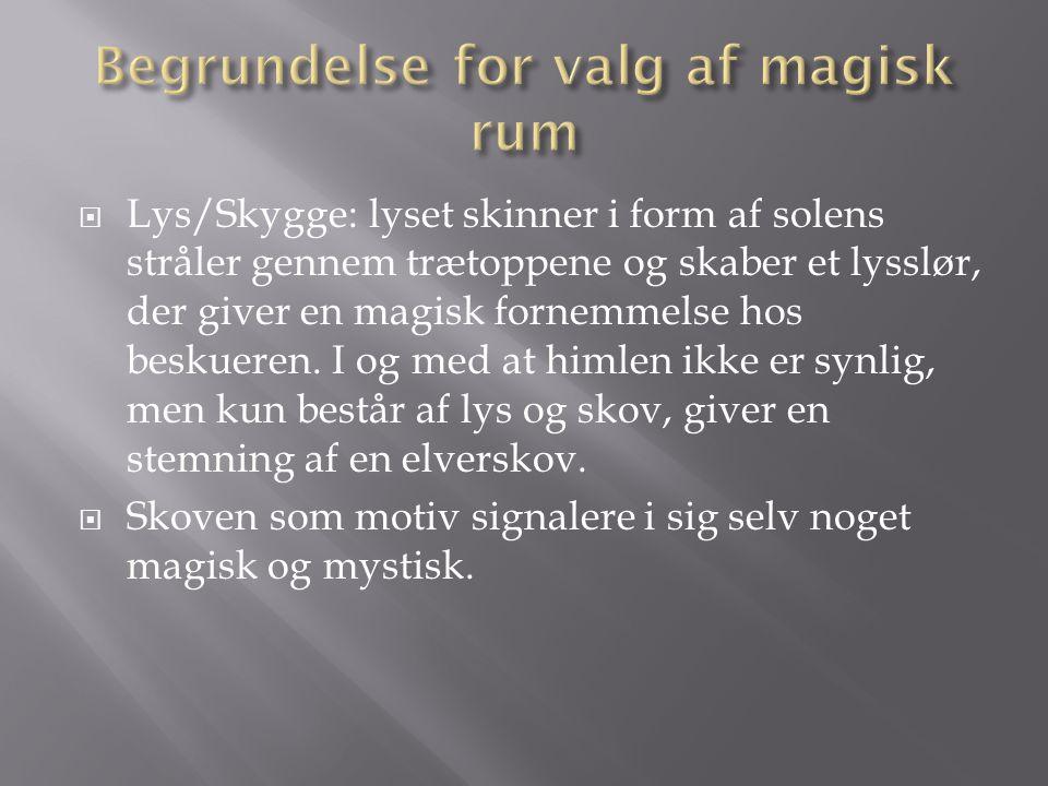 Begrundelse for valg af magisk rum