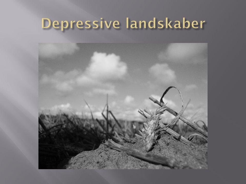 Depressive landskaber