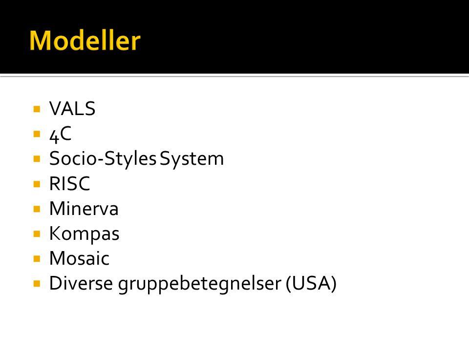 Modeller VALS 4C Socio-Styles System RISC Minerva Kompas Mosaic