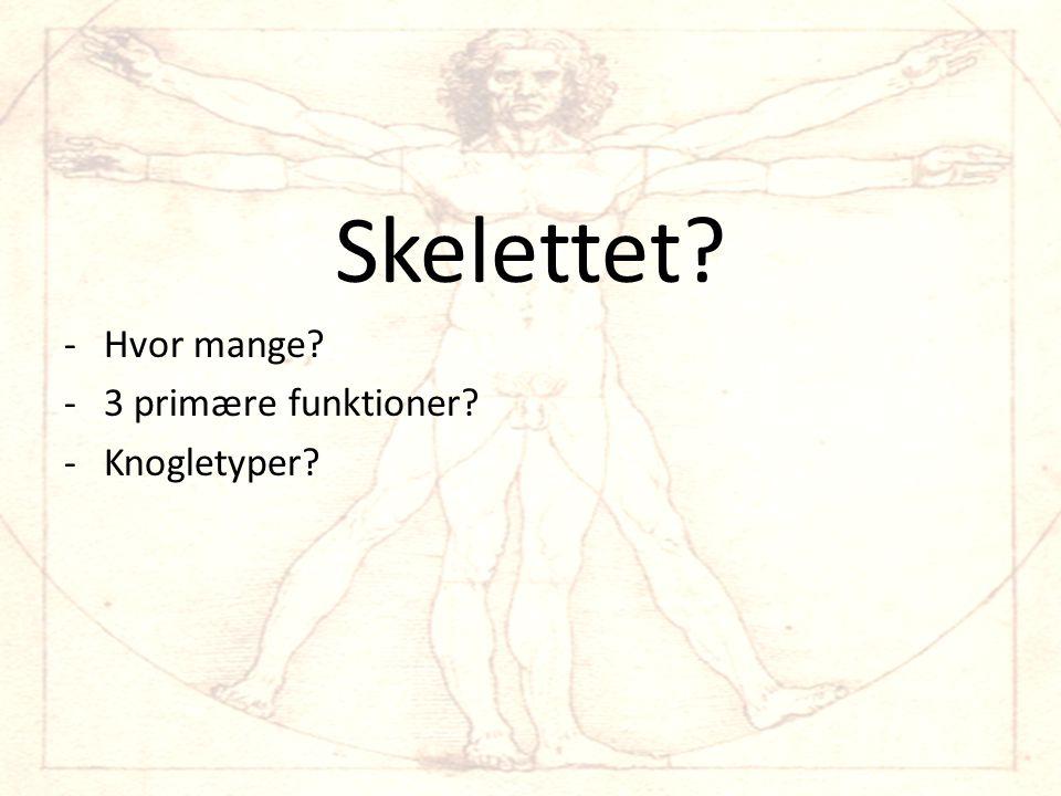 Skelettet Hvor mange 3 primære funktioner Knogletyper