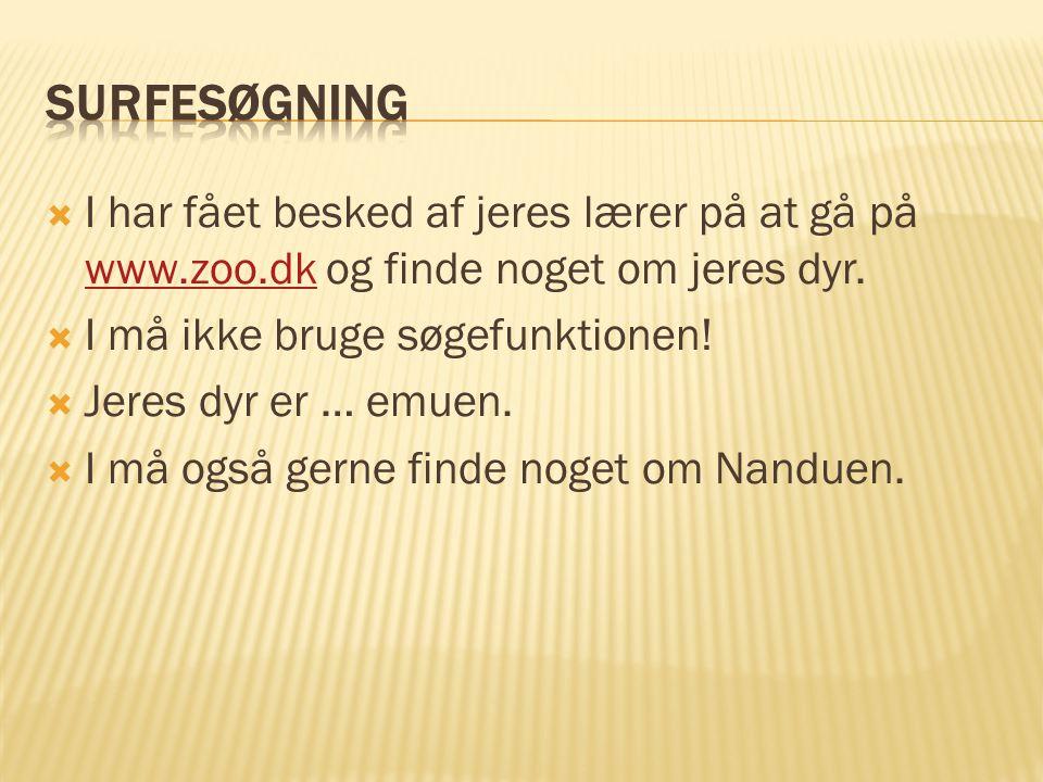 Surfesøgning I har fået besked af jeres lærer på at gå på www.zoo.dk og finde noget om jeres dyr. I må ikke bruge søgefunktionen!