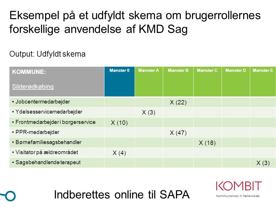 Indberettes online til SAPA