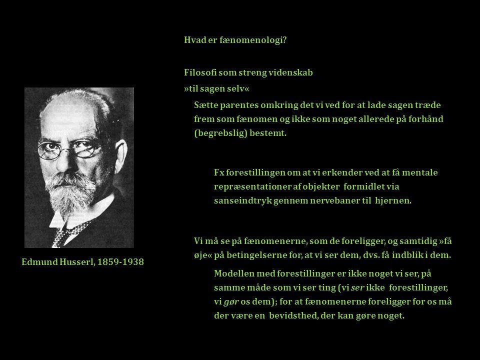 Hvad er fænomenologi Filosofi som streng videnskab. »til sagen selv«
