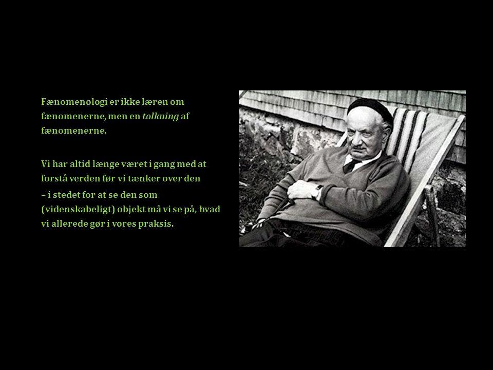 Fænomenologi er ikke læren om fænomenerne, men en tolkning af fænomenerne.