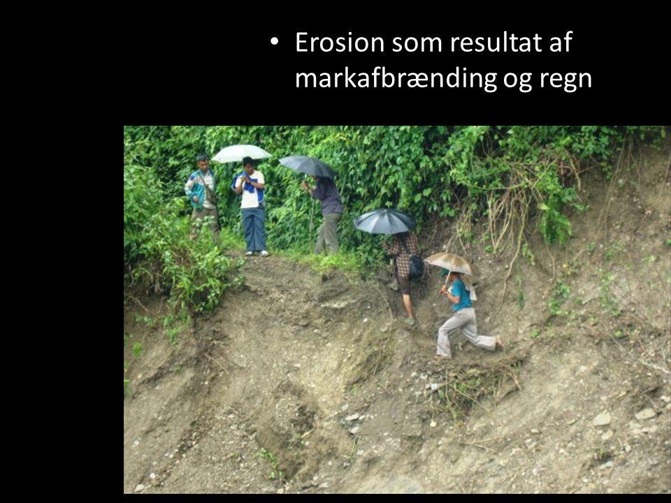 Erosion som resultat af markafbrænding og regn