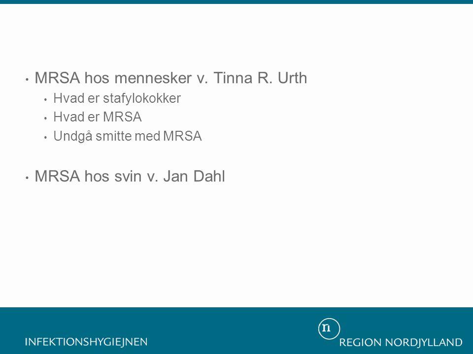 MRSA hos mennesker v. Tinna R. Urth