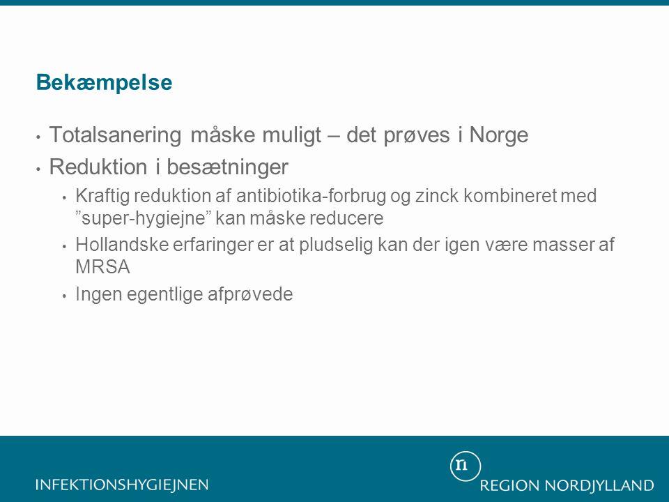 Totalsanering måske muligt – det prøves i Norge