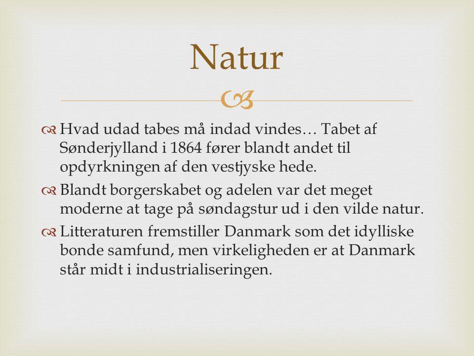 Natur Hvad udad tabes må indad vindes… Tabet af Sønderjylland i 1864 fører blandt andet til opdyrkningen af den vestjyske hede.
