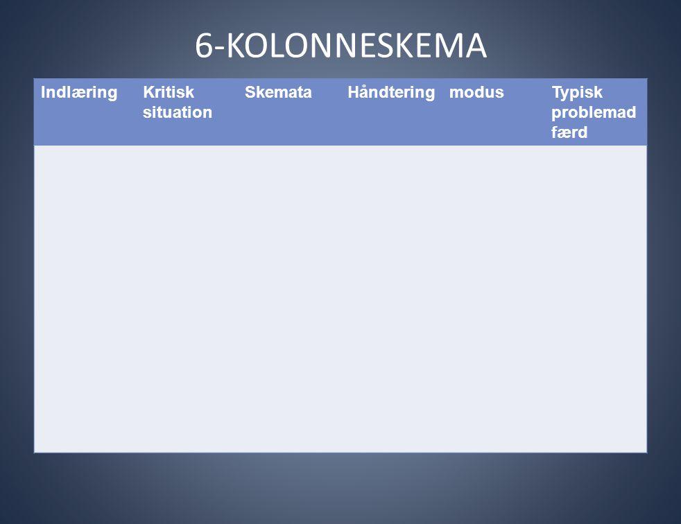 6-KOLONNESKEMA Indlæring Kritisk situation Skemata Håndtering modus