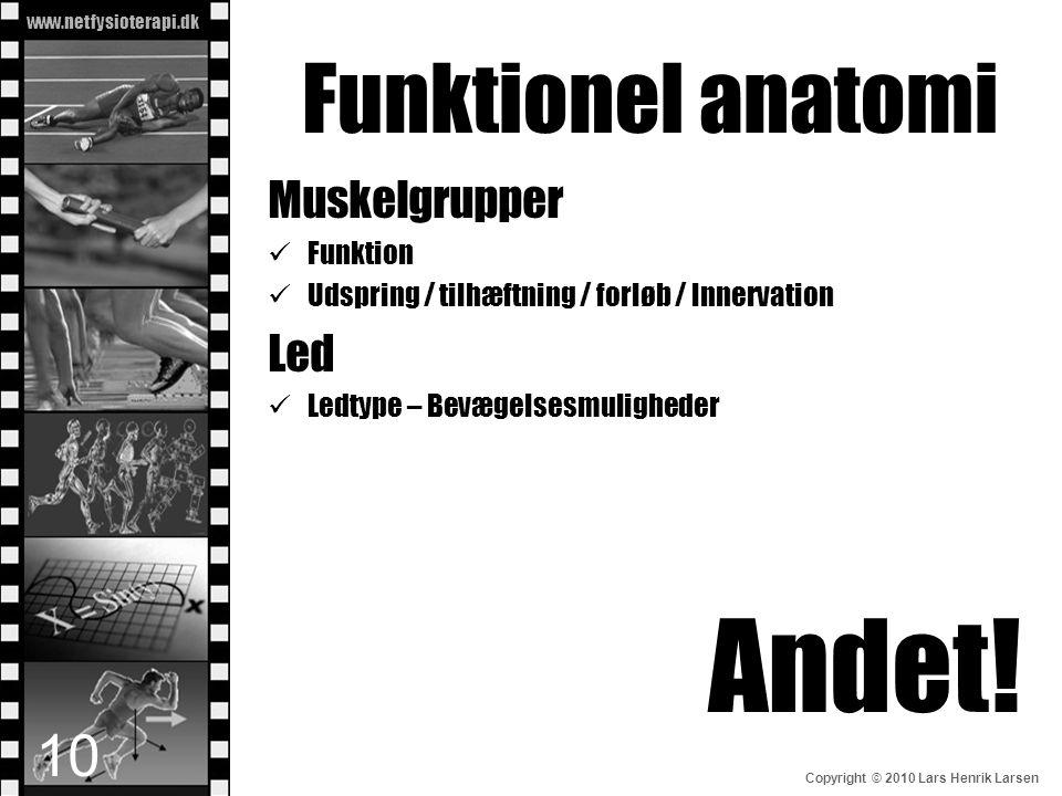 Funktionel anatomi Andet! Muskelgrupper Led Funktion