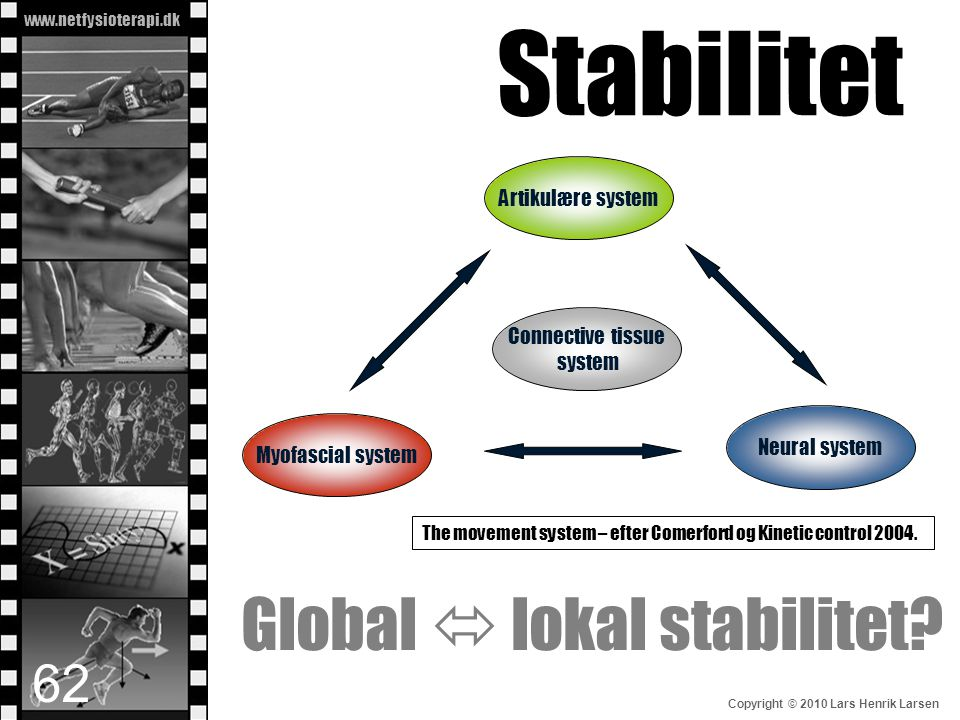 Stabilitet Global  lokal stabilitet Artikulære system