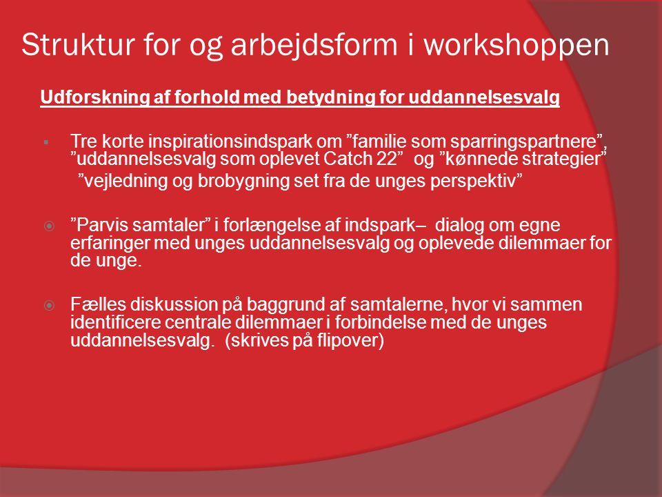 Struktur for og arbejdsform i workshoppen