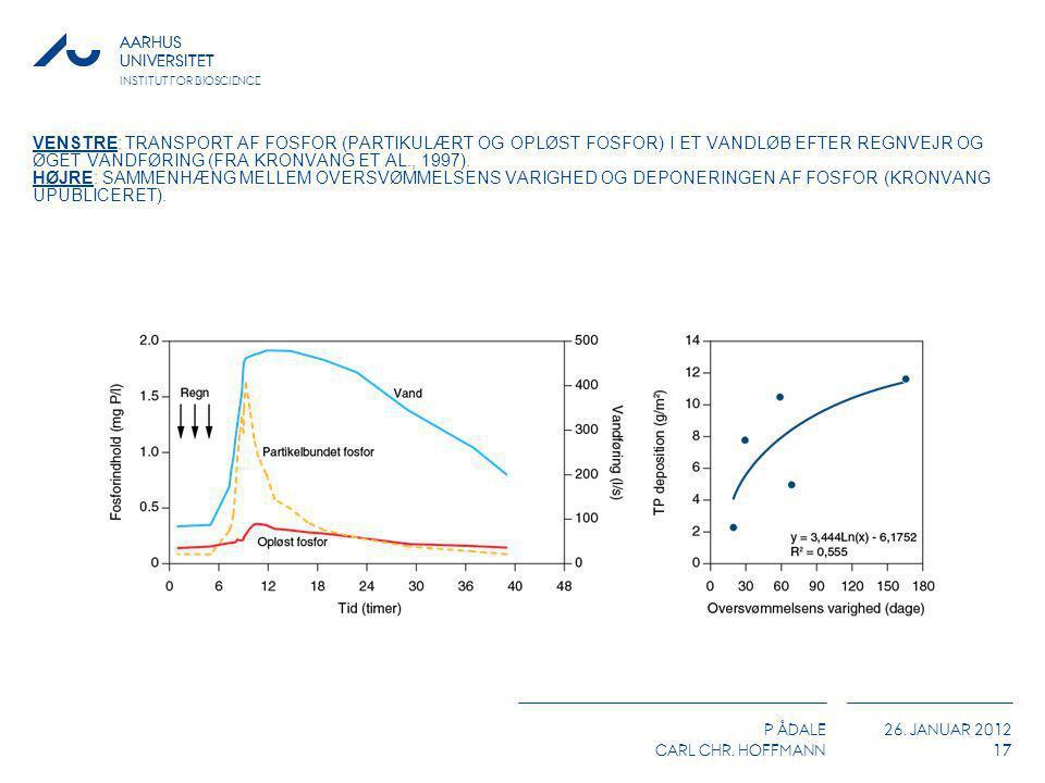 Venstre: Transport af fosfor (partikulært og opløst fosfor) i et vandløb efter regnvejr og øget vandføring (fra Kronvang et al., 1997).