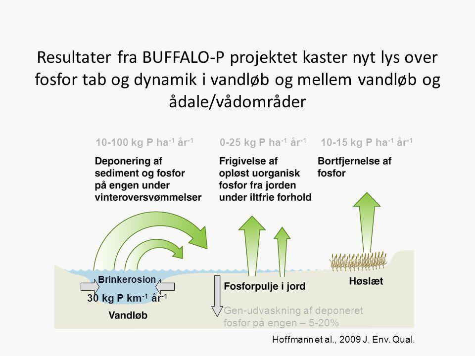 Resultater fra BUFFALO-P projektet kaster nyt lys over fosfor tab og dynamik i vandløb og mellem vandløb og ådale/vådområder