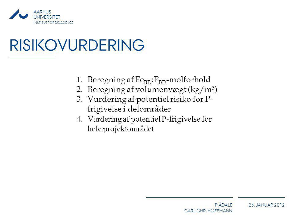 Risikovurdering Beregning af FeBD:PBD-molforhold