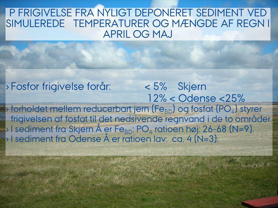 Fosfor frigivelse forår: < 5% Skjern