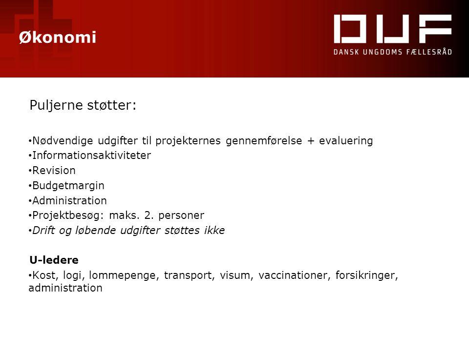 Økonomi Puljerne støtter: