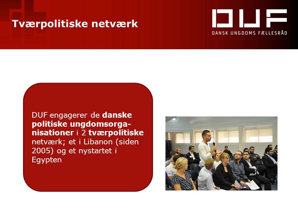 Tværpolitiske netværk