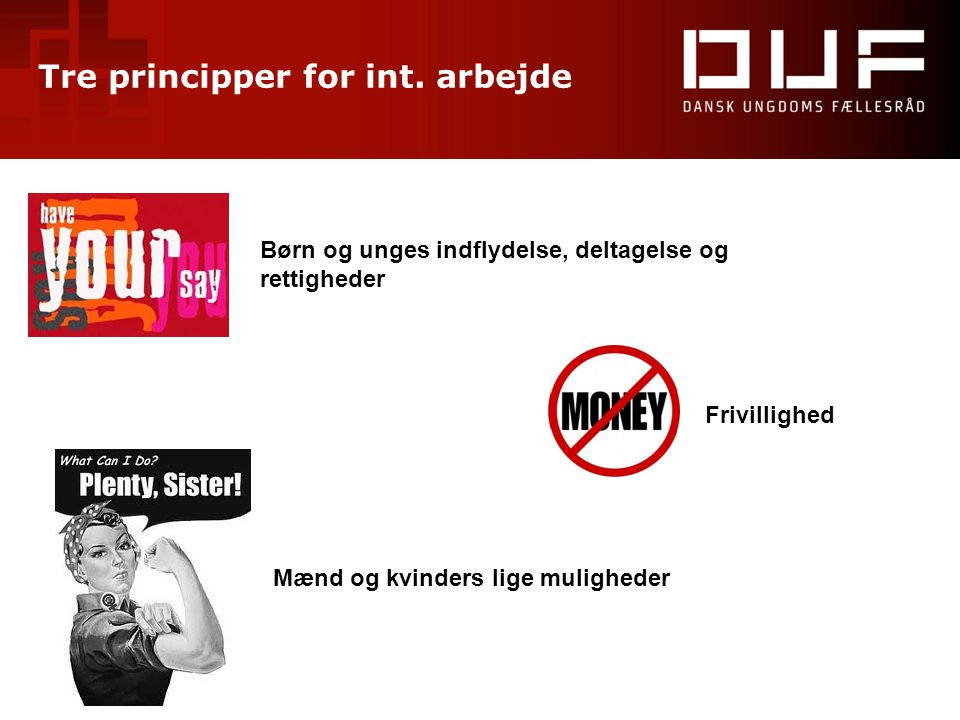 Tre principper for int. arbejde