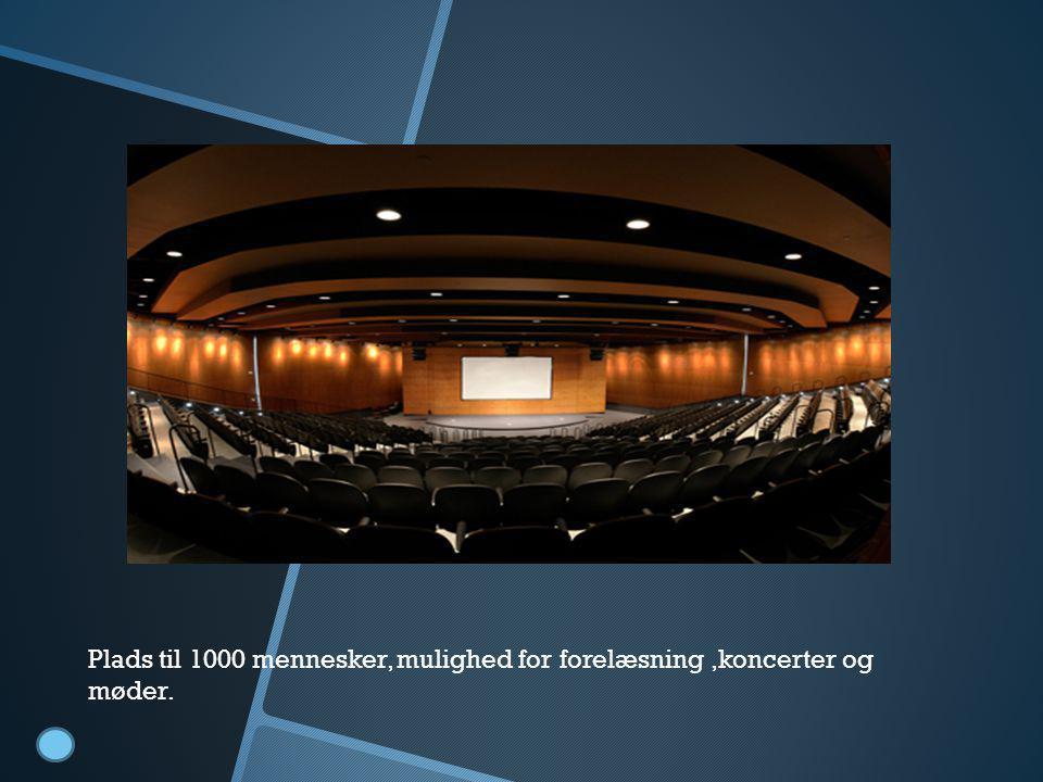 Foredragsal Plads til 1000 mennesker, mulighed for forelæsning ,koncerter og møder.