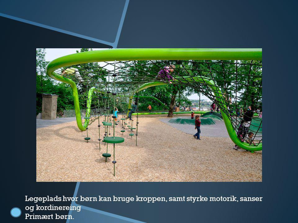 Legeplads Legeplads hvor børn kan bruge kroppen, samt styrke motorik, sanser og kordinereing.