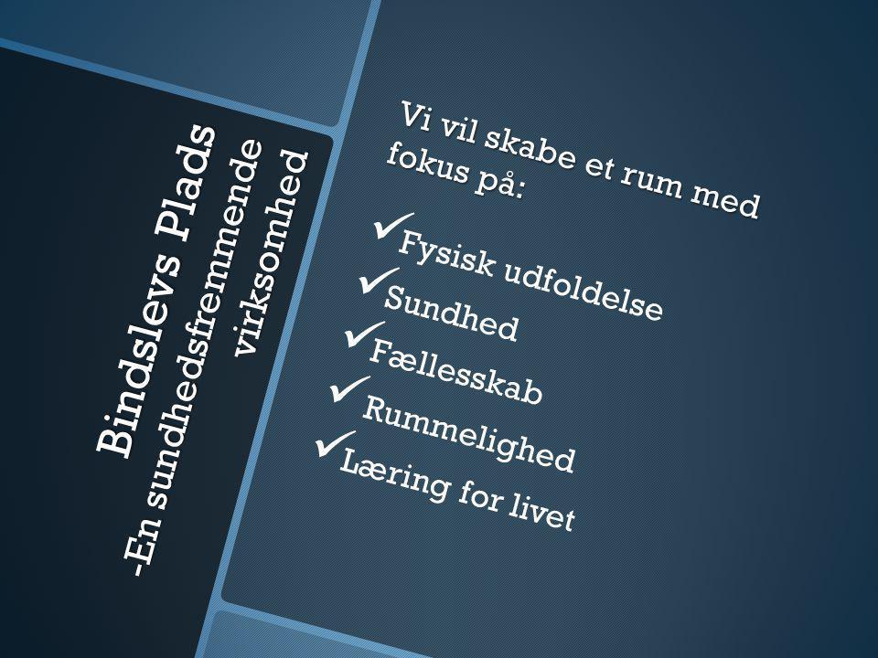 Bindslevs Plads -En sundhedsfremmende virksomhed