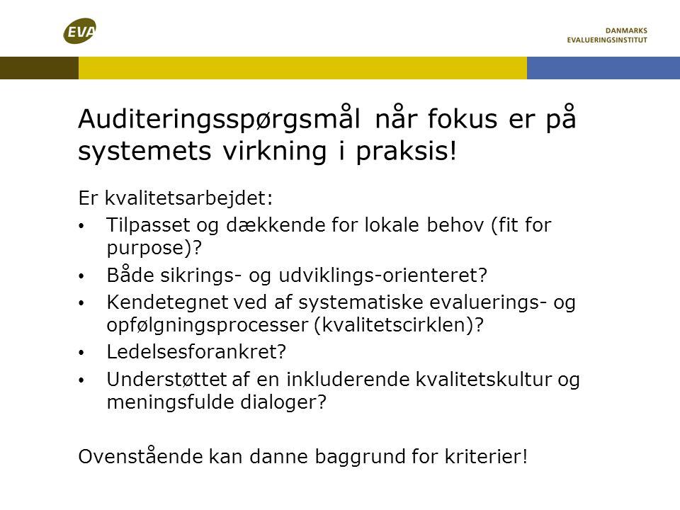 Auditeringsspørgsmål når fokus er på systemets virkning i praksis!