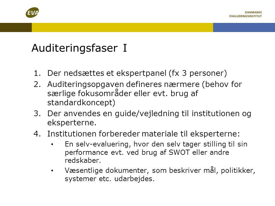 Auditeringsfaser I Der nedsættes et ekspertpanel (fx 3 personer)