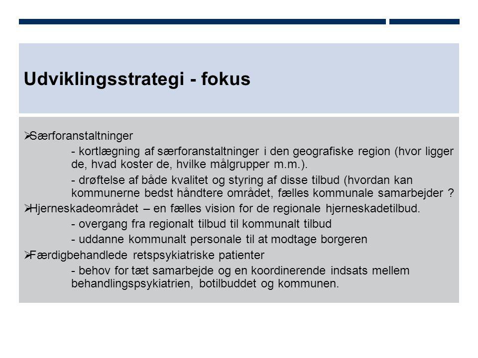 Udviklingsstrategi - fokus