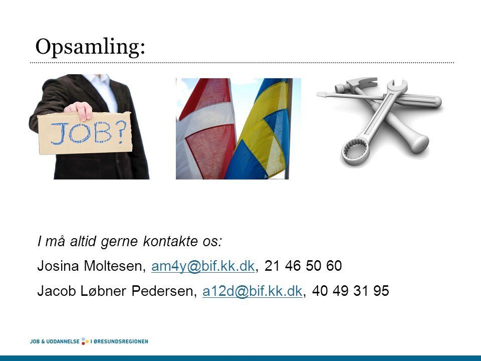 Opsamling: I må altid gerne kontakte os: Josina Moltesen, am4y@bif.kk.dk, 21 46 50 60 Jacob Løbner Pedersen, a12d@bif.kk.dk, 40 49 31 95