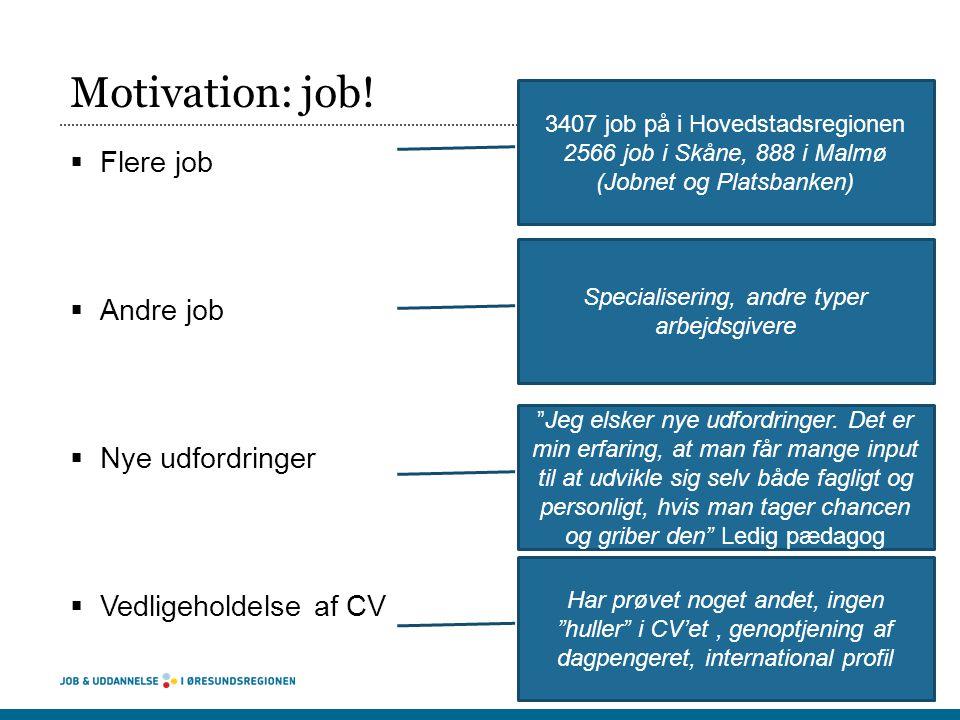 Motivation: job! Flere job Andre job Nye udfordringer