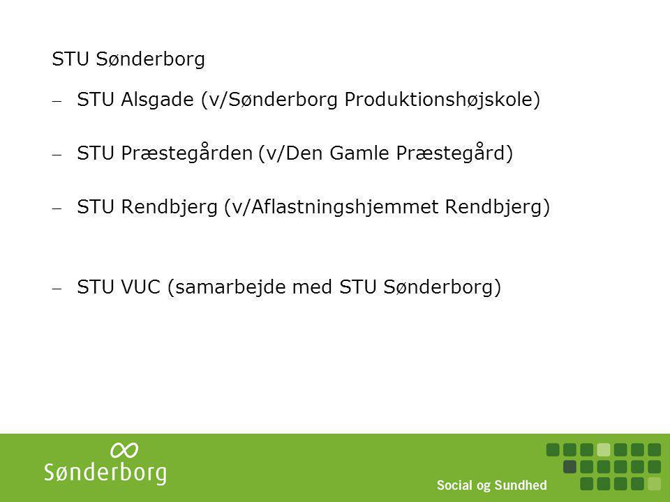 STU - Sønderborg STU Sønderborg UdaUddrannelsennelse STU VUC