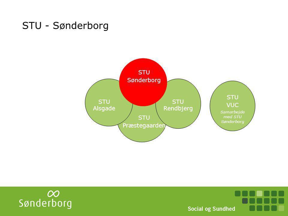 STU Sønderborg Styregruppe (ledere + VUC) Overordnet planlægning. Eks. fælles beskrivelse, skabeloner.