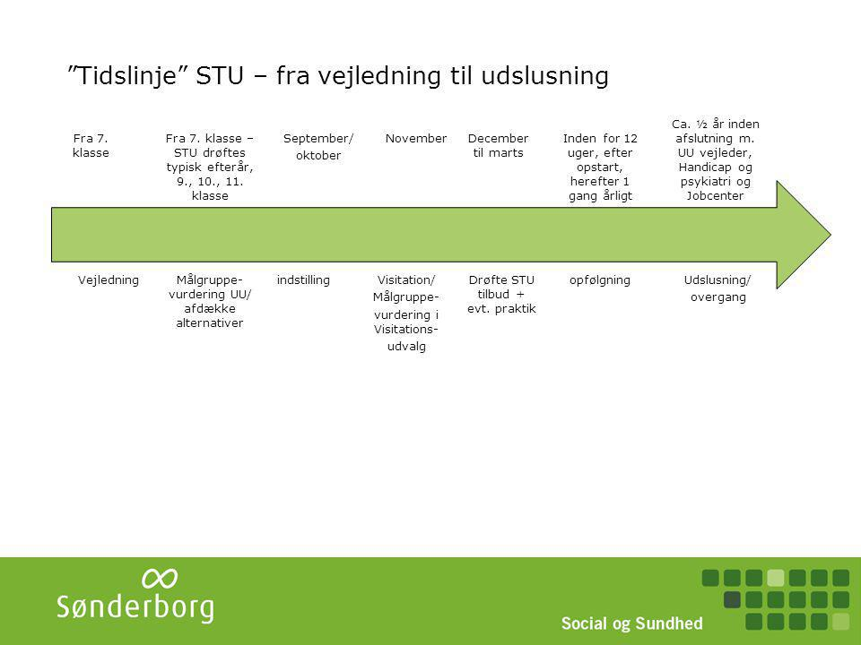STU - snitflader STU Uddannelse UdaUddrannelsennelse Forsørgelse