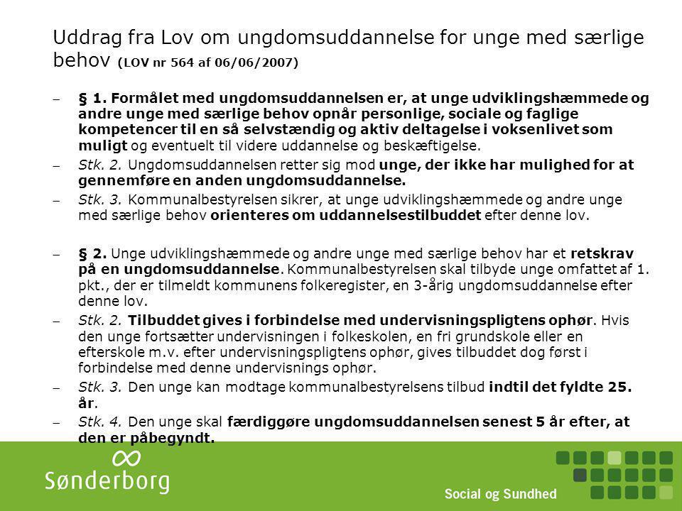 Uddrag fra Lov om ungdomsuddannelse for unge med særlige behov (LOV nr 564 af 06/06/2007)