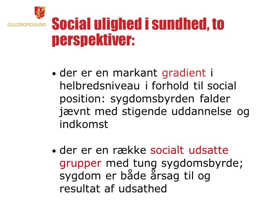 Social ulighed i sundhed, to perspektiver:
