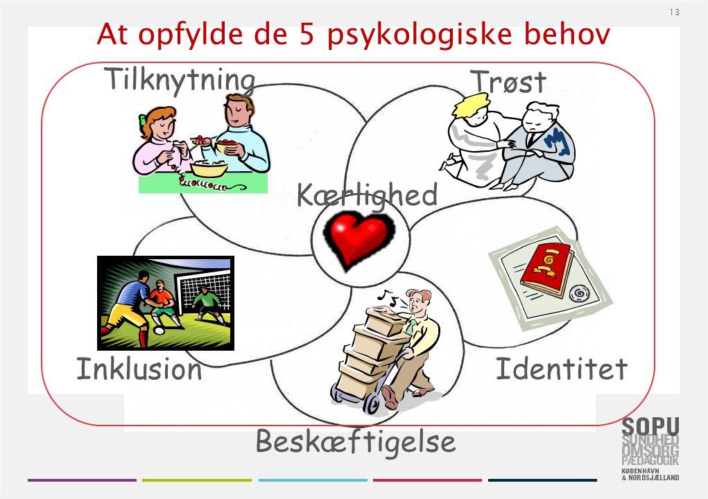 At opfylde de 5 psykologiske behov