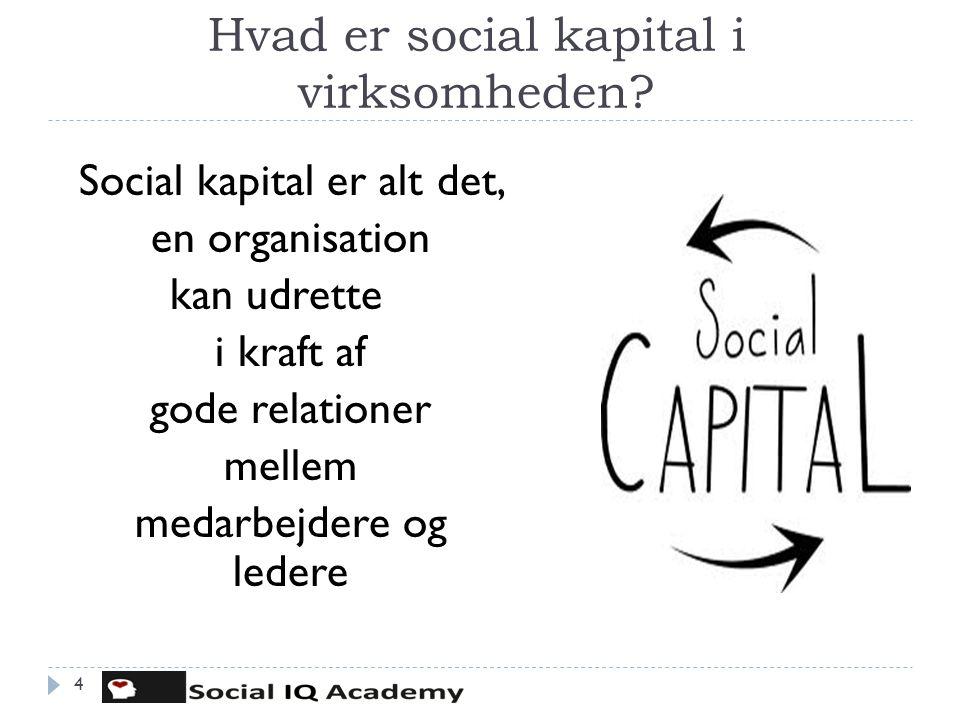 Hvad er social kapital i virksomheden