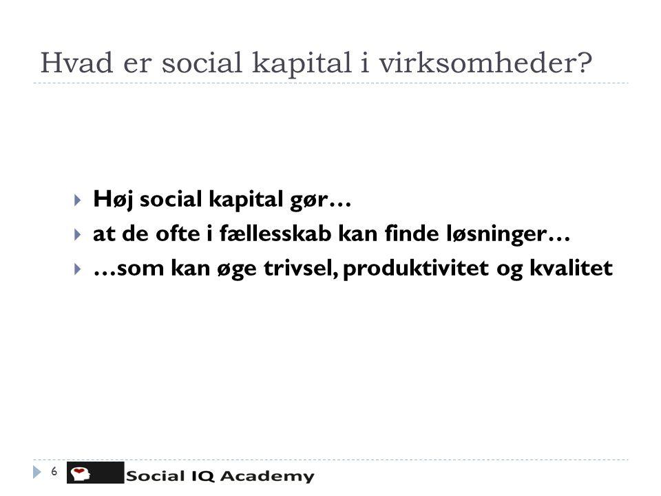 Hvad er social kapital i virksomheder