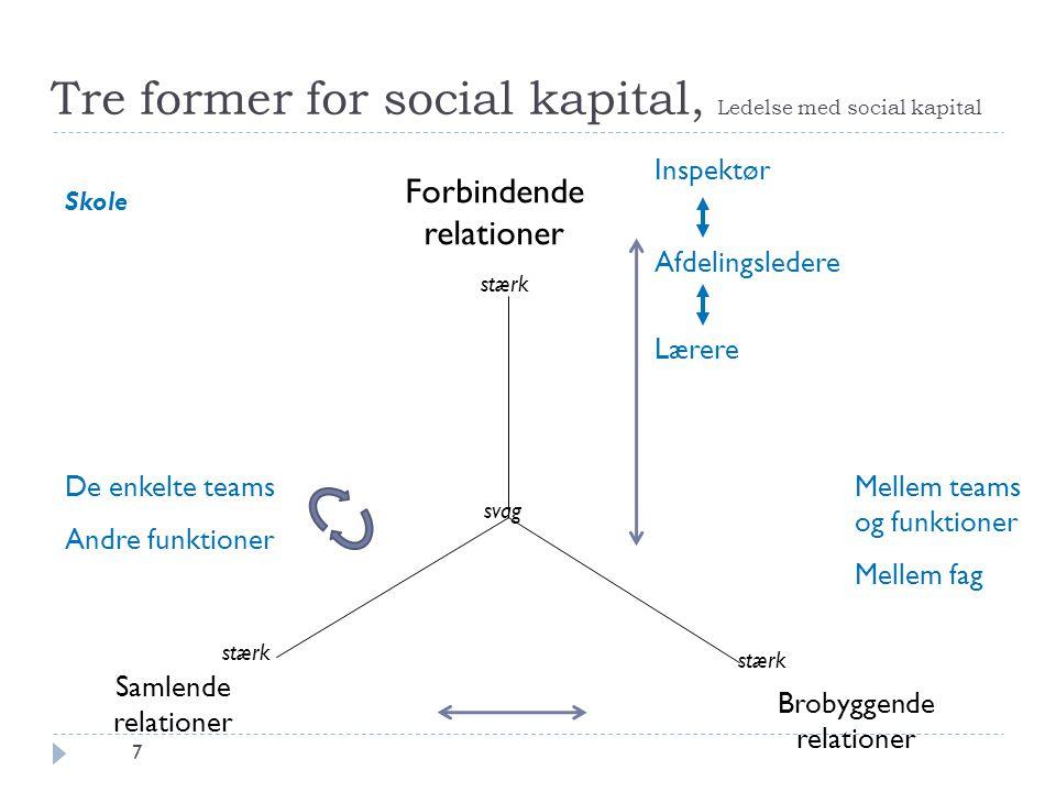 Tre former for social kapital, Ledelse med social kapital