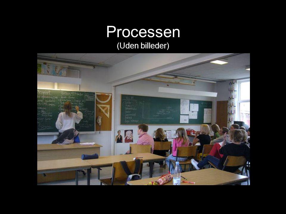 Processen (Uden billeder)