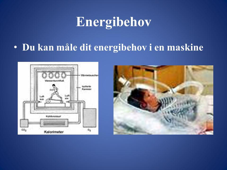Energibehov Du kan måle dit energibehov i en maskine