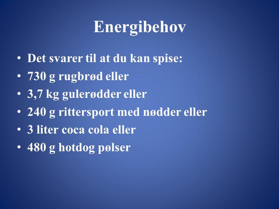 Energibehov Det svarer til at du kan spise: 730 g rugbrød eller